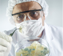 mold-test-kit-doctor